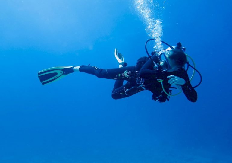 Cool divers: the signs to spot them (and why I like them 😍)