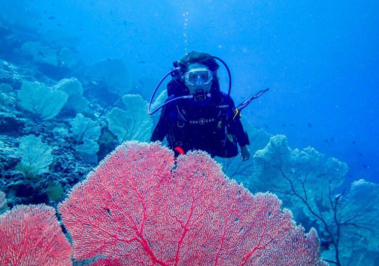 La vérité sur le blog de plongée Different Dive
