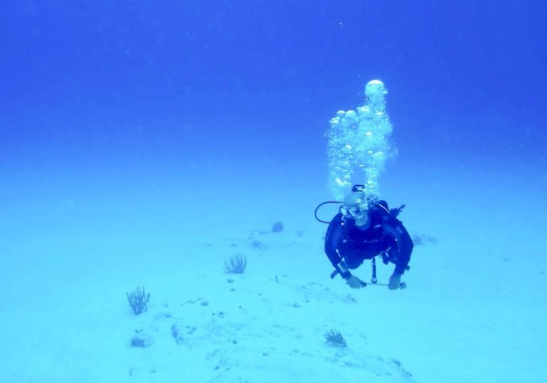 20 profils incontournables de plongeurs