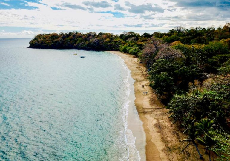 Diving in Mayotte: the South, kingdom of sea turtles